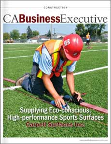 CA Business Executive - Carpell feature